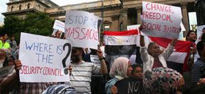 egypt intl response